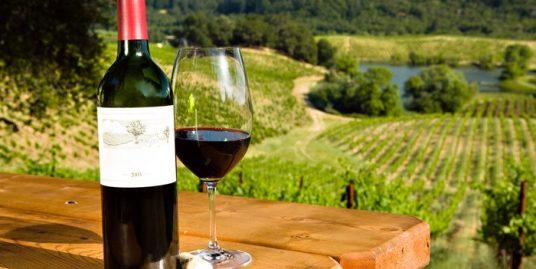 daveste-vineyards-wine-and-design